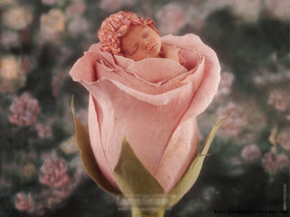 baby, cute babies, babys, baby flower, images,