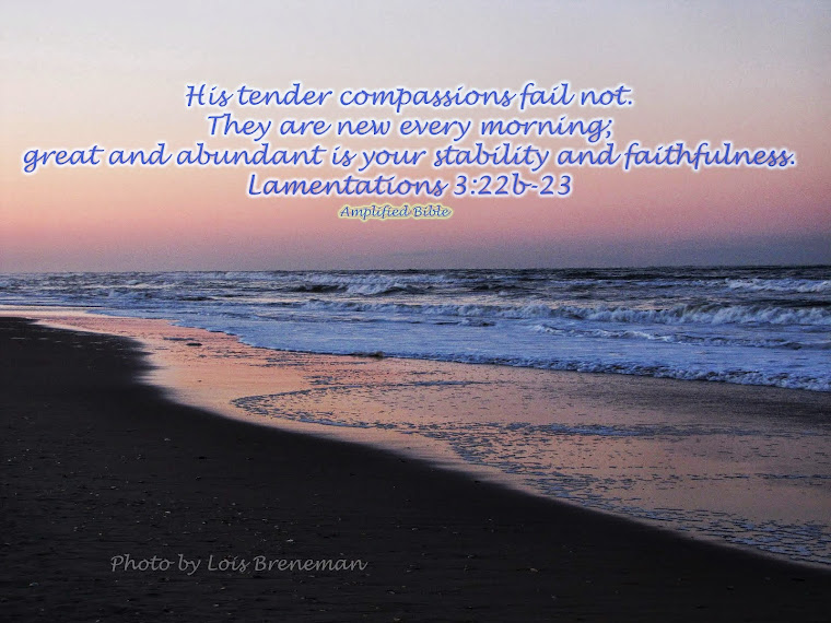 Ocean - Lam. 3:22-23