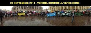 20 SETTEMBRE 2014 FIACCOLATA CONTRO LA VIVISEZIONE A VERONA