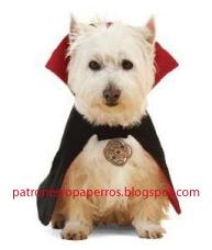 disfraz dracula perro