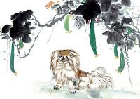 Ramalan Shio Anjing