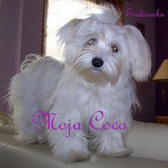 Moja Coco