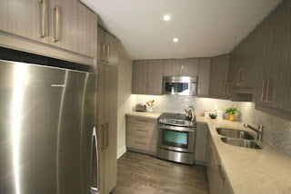 Toronto Condo Kitchen