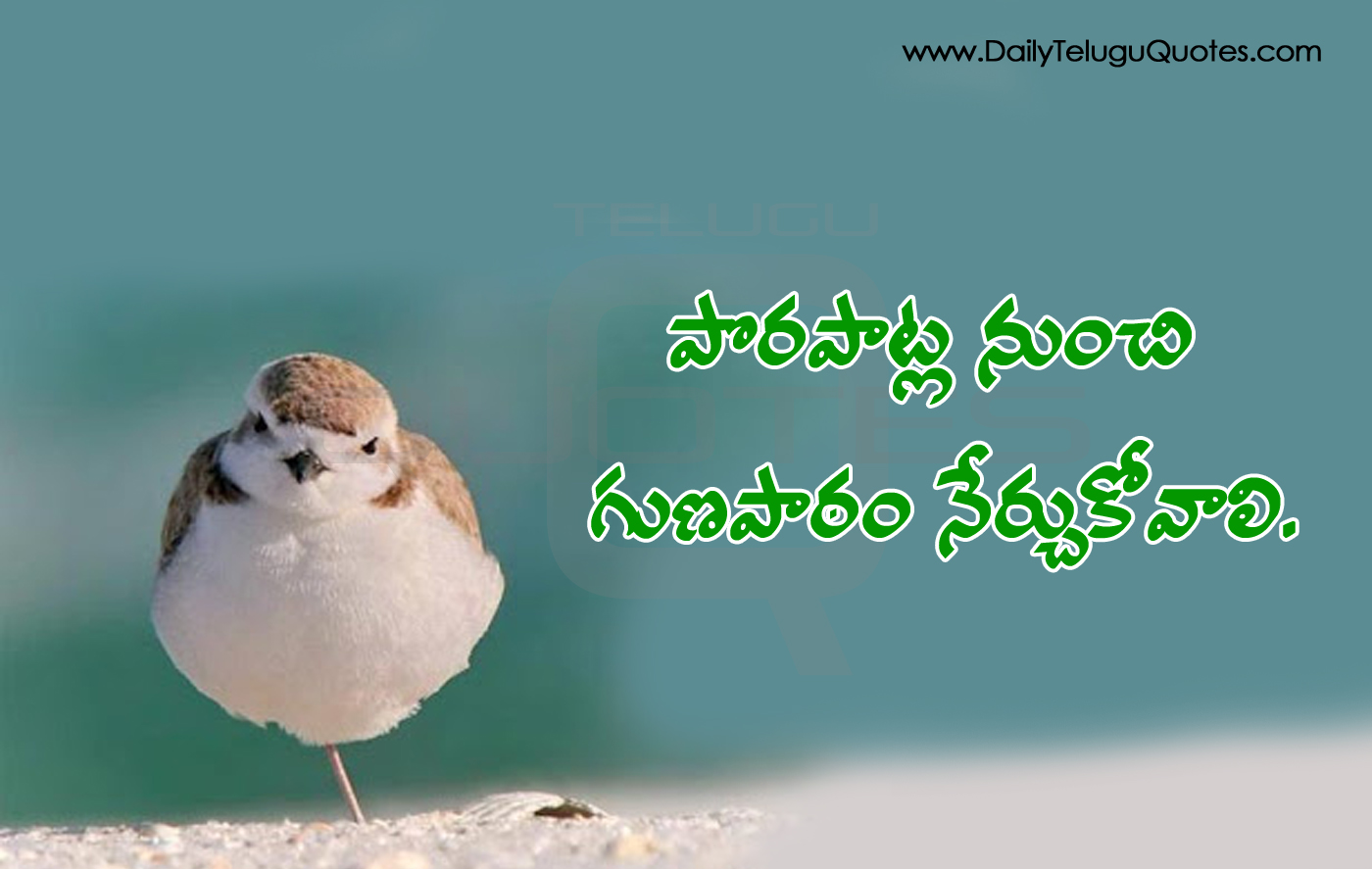 Inspirational Thoughts Best Motivational Thoughts And Quotes In Telugu About Life