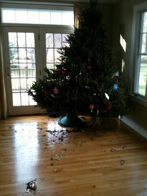 fallen Christmas tree