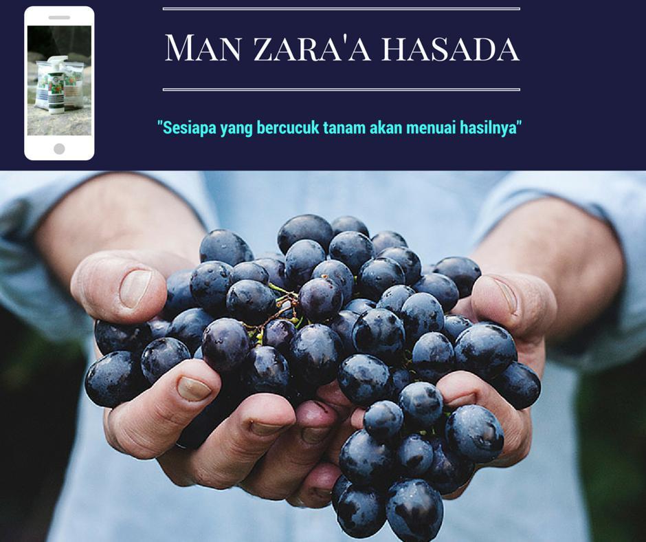 MANZARAA HASADA