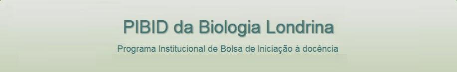 PIBID da Biologia Londrina