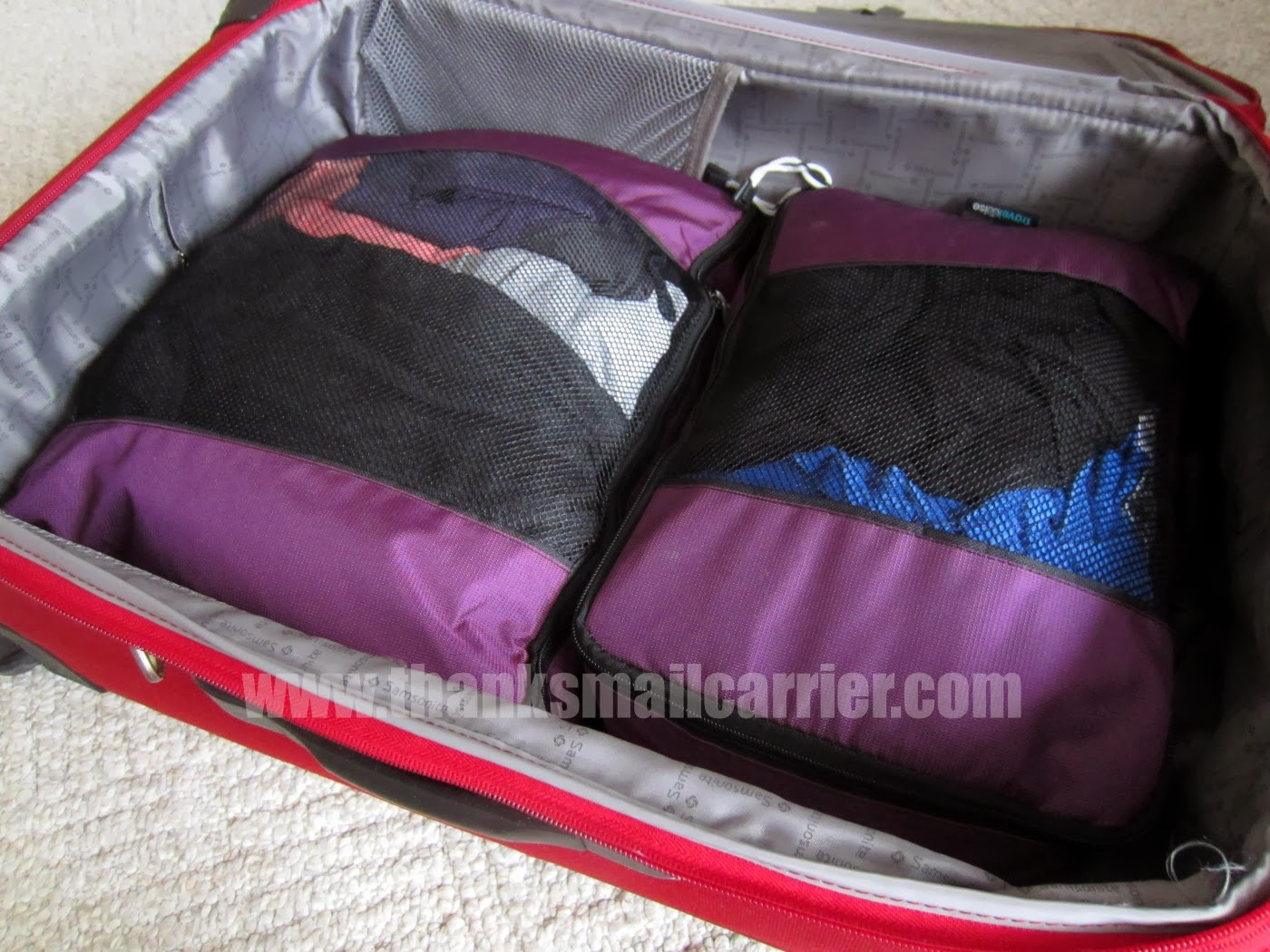 TravelWise Packing Cubes review