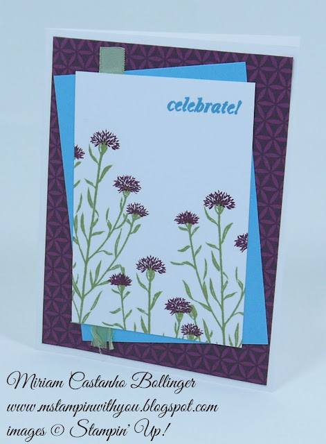 Miriam Castanho Bollinger, #mstampinwithyou, stampin up, demonstrator, ppa, birthday card, bohemian dsp, wild about flowers, and many more stamp set, su