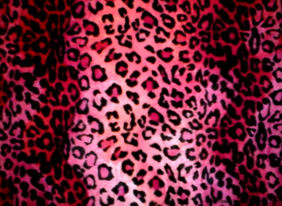 Pink Leopard Print Wallpaper   Desktop Backgrounds