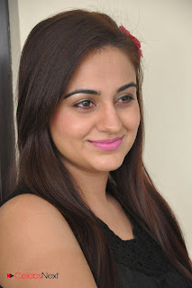Aksha Latest Pictures at Rey Rey Success Meet  0003