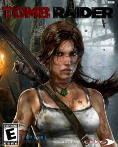 11441 Tomb Raider Survival Edition PC Game