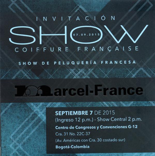 Gran-espectáculo-peluquería-Show-Coiffure-Francaise-2015