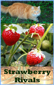 Strawberry Rivals, by Hollis Shiloh