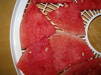fresh watermelon slices in food dehydrator