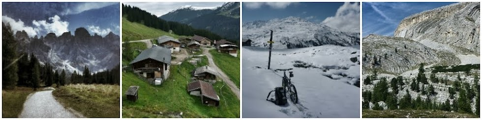 Trans Alp