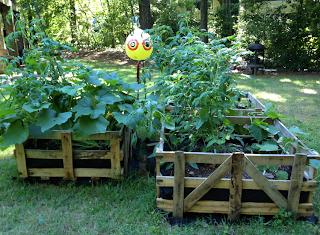 pallet crate garden