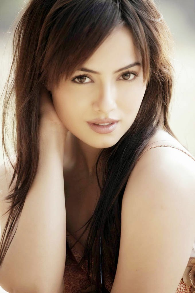 Sana Khan to Join Big Boss 8 as 5th Challenger with Others.