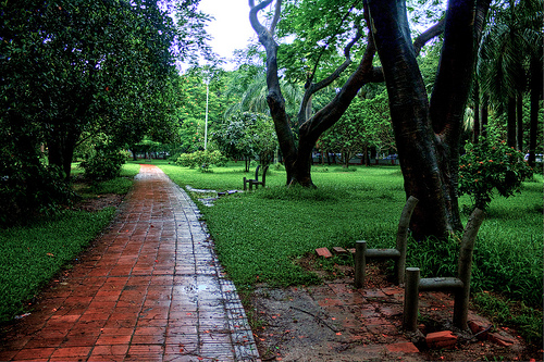 Ramna Park The Most Beautiful Place In Dhaka