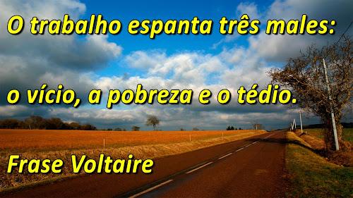 Frases de Voltaire sobre o Trabalho