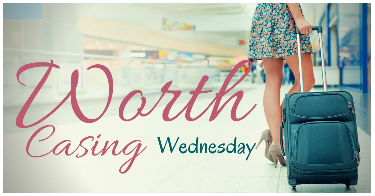Blog linkup Ms Mystery Case Wordless Wednesday | Worth Casing Wednesday