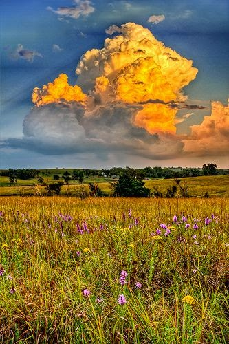 Stormy Pasture, flinthill, Kansas, USA