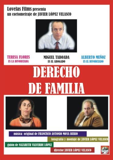 DERECHO DE FAMILIA (2.008)