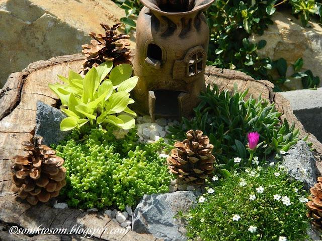 Mini záhrada alebo Fairy Garden