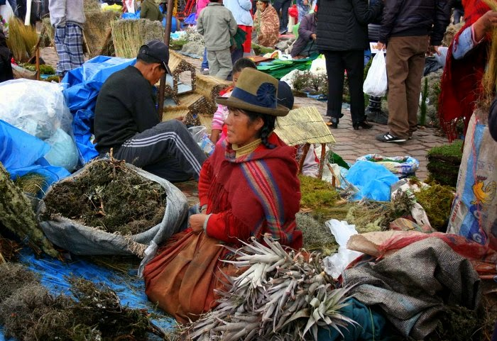 women sell grass and moss for making nativity scenes - Cusco, Peru