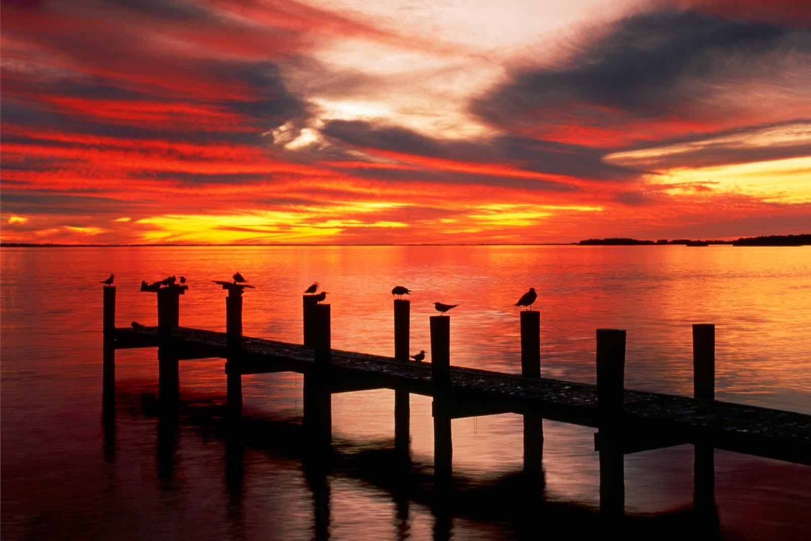 http://3.bp.blogspot.com/-aktAq2L1i2Y/Tdbbh0mcz7I/AAAAAAAAAVI/EMgLoDpGrSQ/s1600/sunsetmantra+%252815%2529.jpg