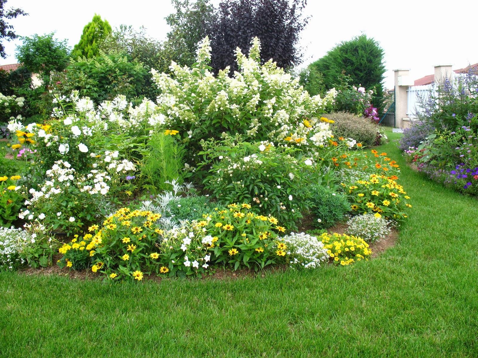 roses du jardin ch neland cr ation d 39 un massif jaune et blanc. Black Bedroom Furniture Sets. Home Design Ideas