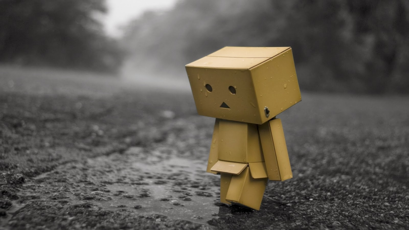 danbo wallpapers beautiful wallpapers collection 2014