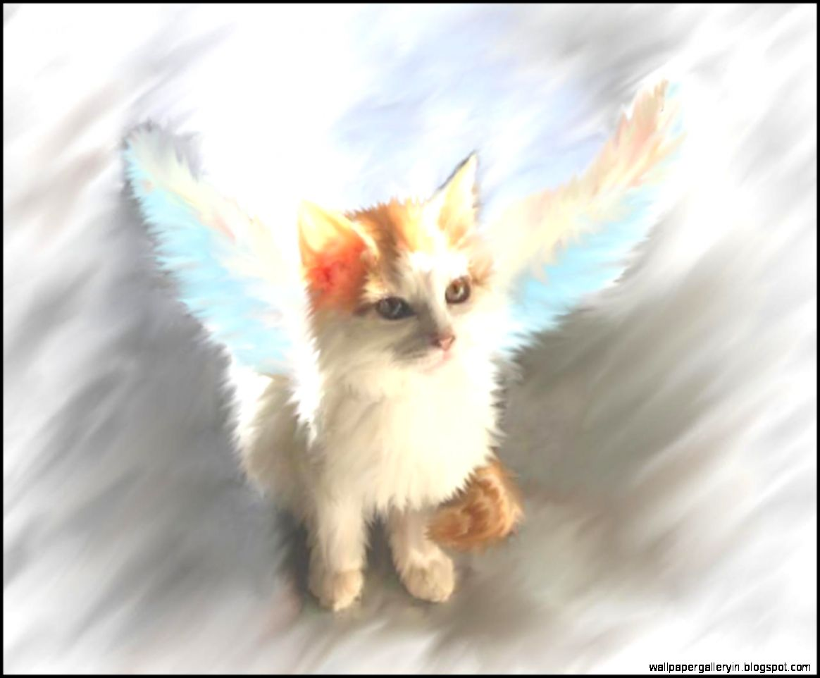 Wonderful Wallpaper Hello Kitty Angel - kitty-angel-painting-naw-boy-yoos-doin-it-9fs0  Picture_756736.jpg
