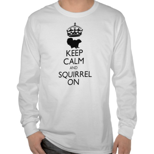 Keep Calm and Squirrel On Shirt