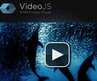 VideoJs-html5-video-player