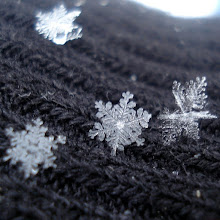 Snowflakes on Gray Wool