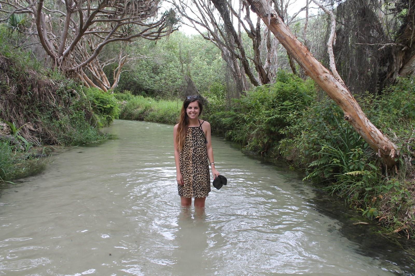 Fraser Island, Eli Creek