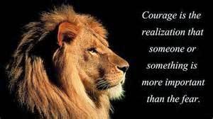Olifantje met leeuwenmoed ontkomt zijn 14 belagers