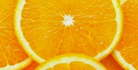 Cachorro pode beber laranja?