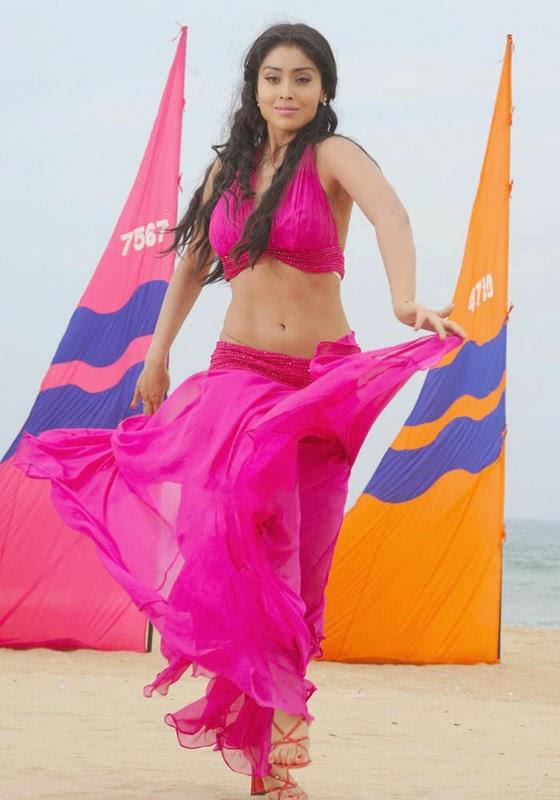 shriya saran hot navel hd pics
