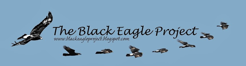 The Black Eagle Project
