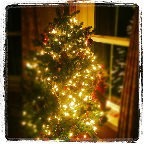 holiday tree instagram