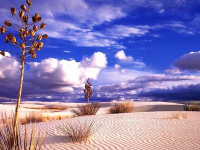 HD Desert Wallpapers
