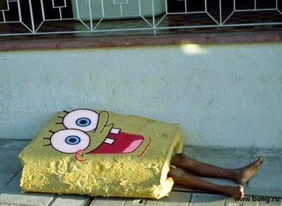 Real life spongebob sleeping,Fun pics online, latest fun pics
