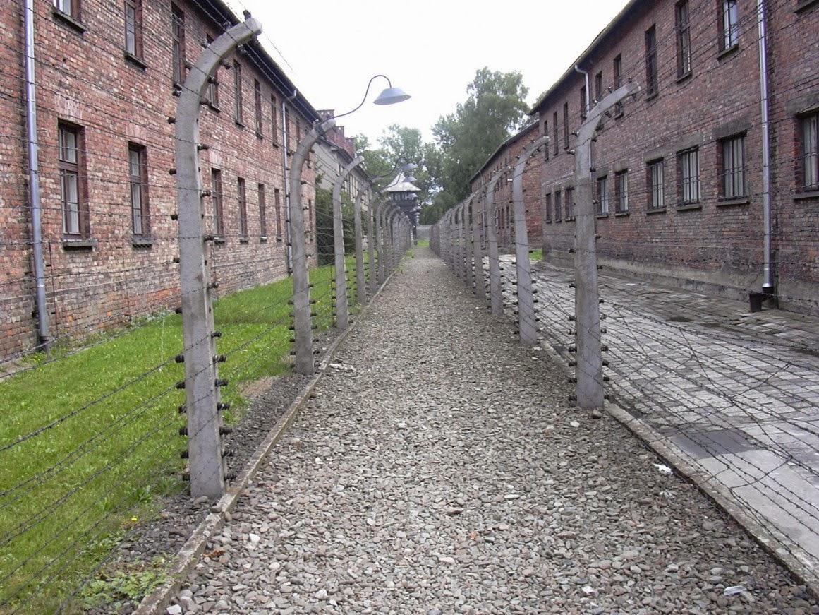 http://ca.wikipedia.org/wiki/Auschwitz