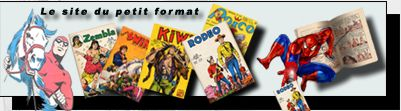 le site du dictionnaire de la bande dessinée.
