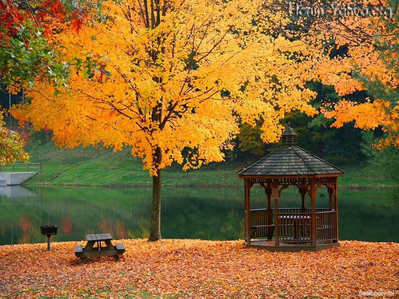 Картинки календарь погоды осень