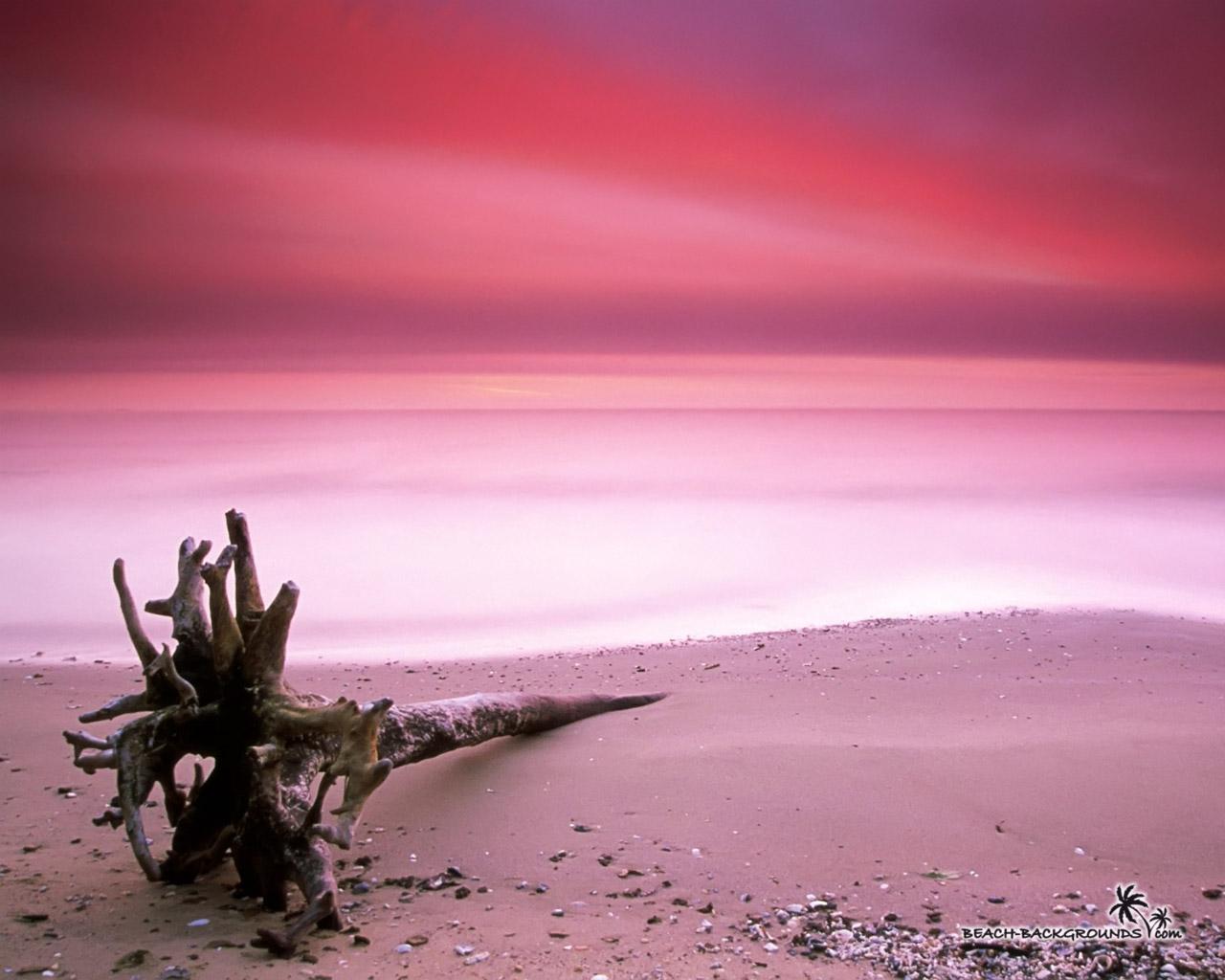 http://3.bp.blogspot.com/-aoN9kvugjZ0/TaNNqxnKX9I/AAAAAAAAAR8/kDa8ugzI_dY/s1600/maryland-beach-wallpaper-1280x1024.jpg