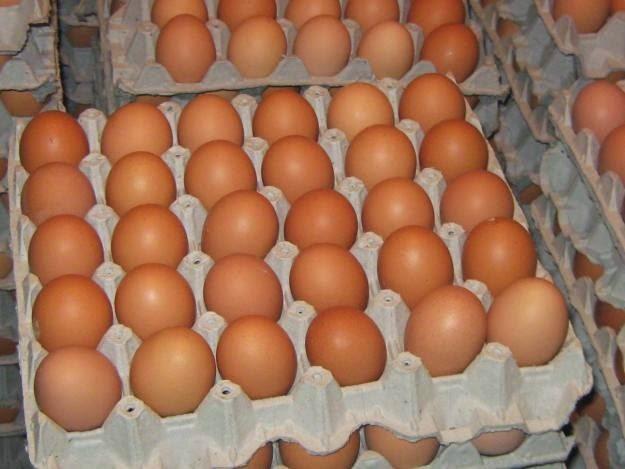 Huevos en Bolivia