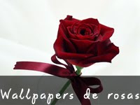 Wallpapers de Rosas
